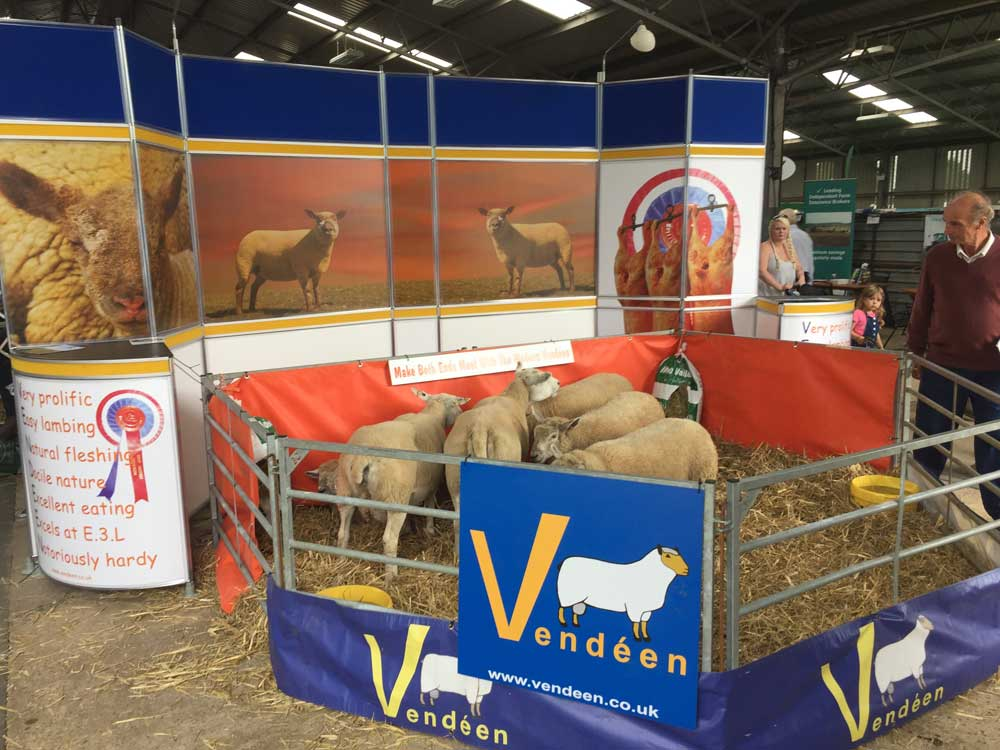 british vendeen sheep breeders society